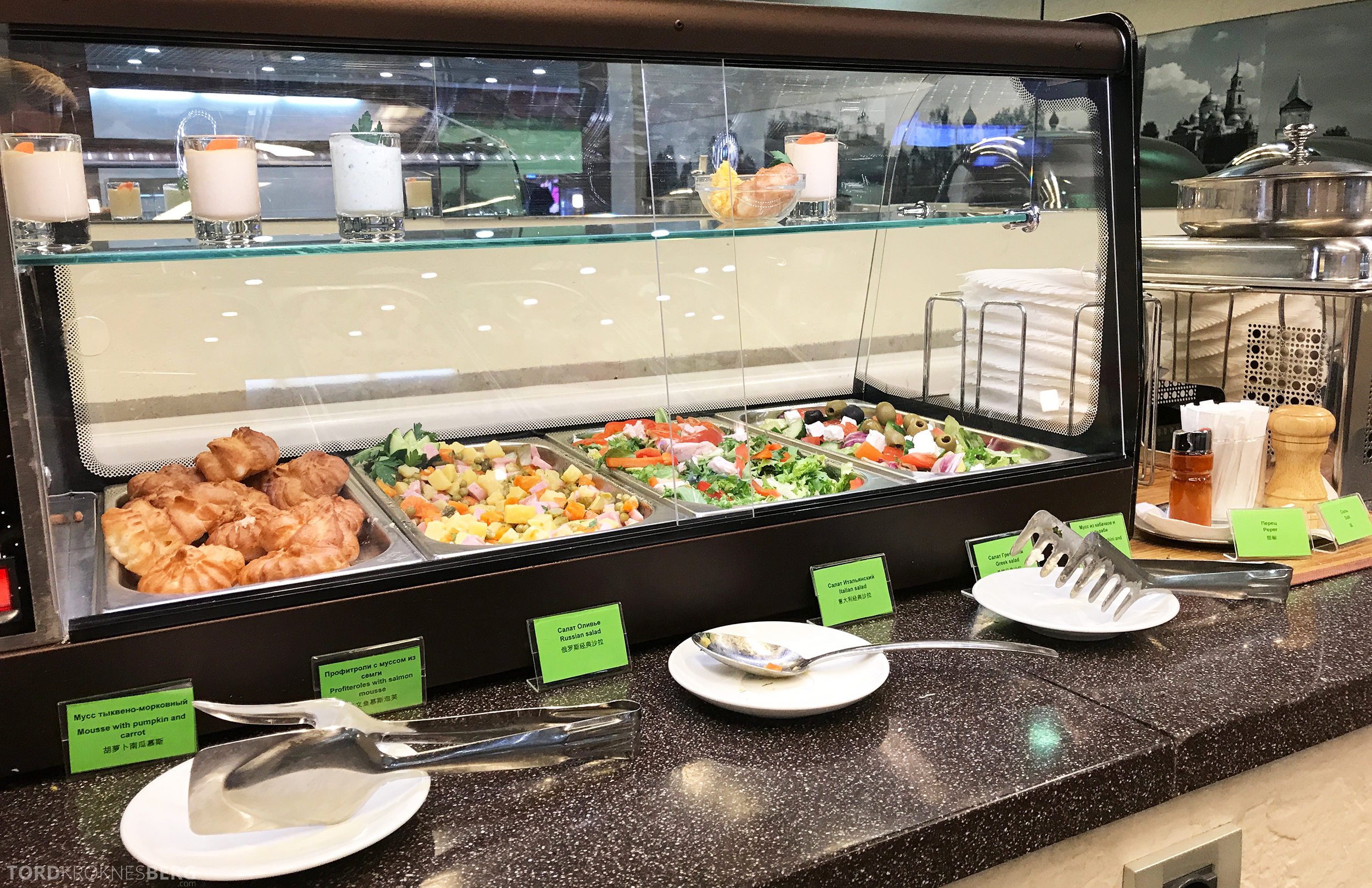 Airport Business Lounge Moskva salat