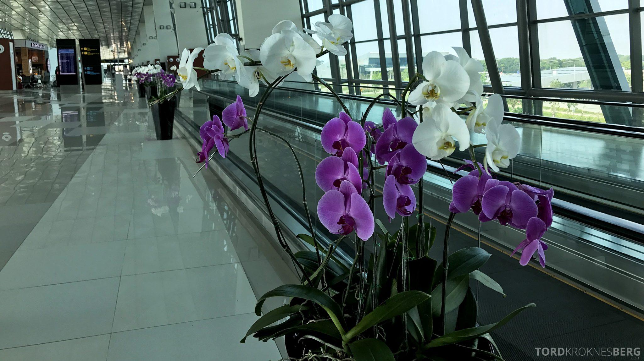 Garuda Indonesia Jakarta terminal blomster